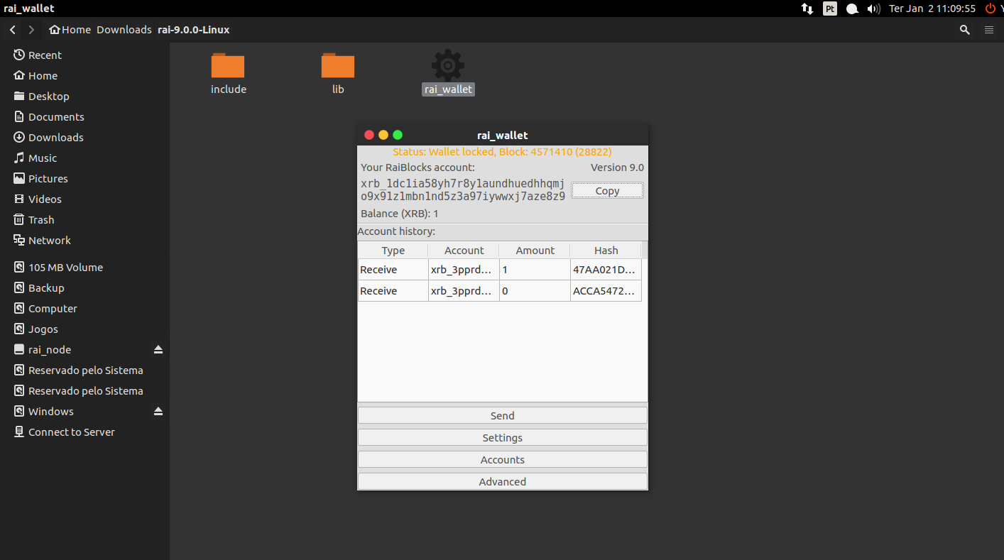 Tutorial para Configuração da Carteira Digital - Raiblock para Desktop