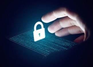 """""""Não deixem suas criptomoedas em exchanges, nem na Kraken"""", diz CEO da empresa"""