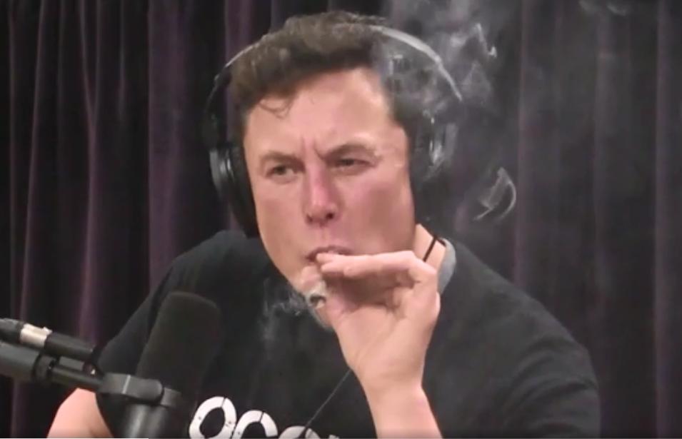 """Dogecoin pode ser minha criptomoeda favorita"", diz Elon Musk"