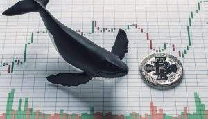 Baleia movimenta R$ 1,5 bilhão em Bitcoin pagando R$ 1,70 de taxa