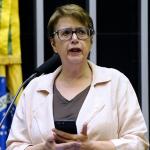 Deputada do PT convida especialistas para debate sobre a regulamentação de criptomoedas e blockchain