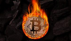 Bitcoin pegando fogo - portal do bitcoin